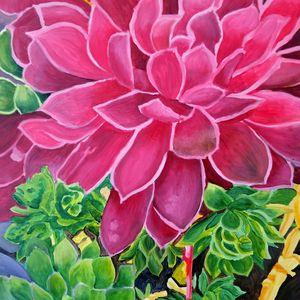 Dark Pink Succulents