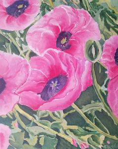 Acrylic Pink Poppies