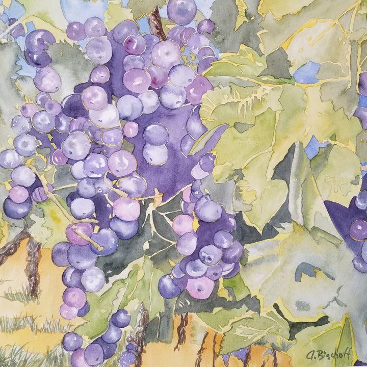 Purple Grapes - Anita Bischoff
