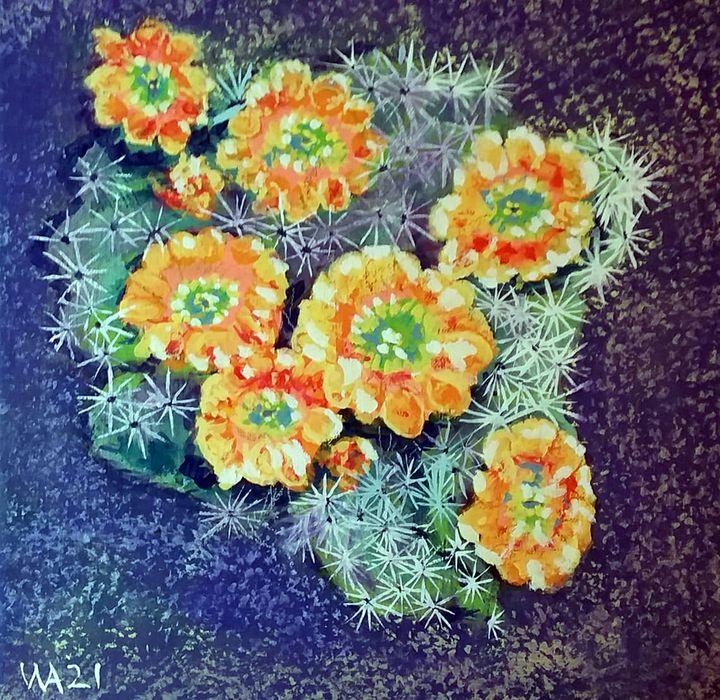 Hedgehog Cactus in Bloom - W. R. Adams Fine Art