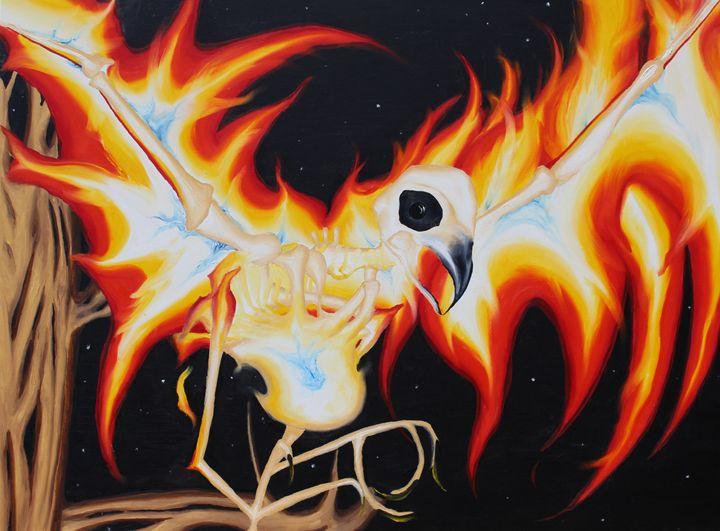 Phoenix - Transformations