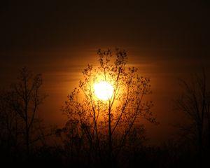 Brushed Sunset