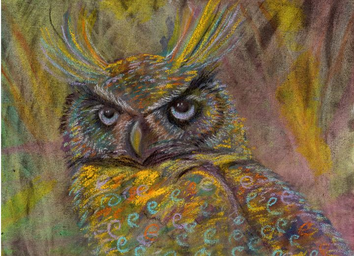 Funky Owl - Wendy Smalley