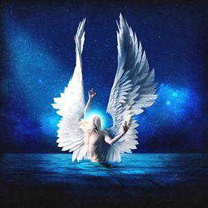 Water Angel - Becket