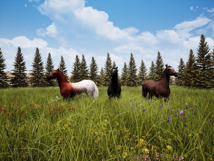 Horses In A Meadow III - NeworImage