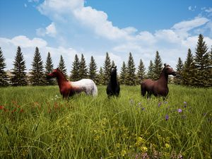 Horses In A Meadow III
