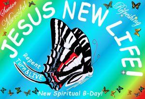 Zebra Swallowtail sky blue delight