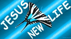 NEW LIFE Zebra Butterfly Neon