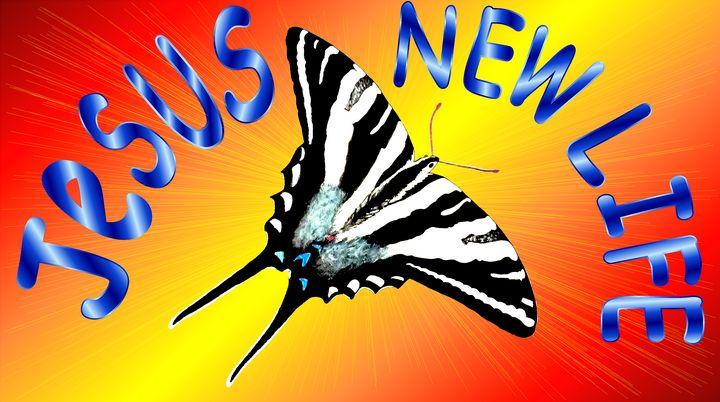 Jesus New Life Zebra butterfly - Jesus Marketing & Country