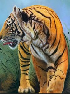 Indian tiger handmade painting