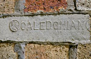 "Bricks ""Caledonian"""