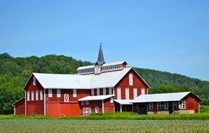 Maple Grove Barn