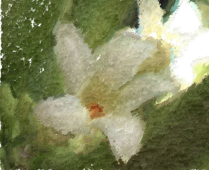 Flowers need water - Meditations