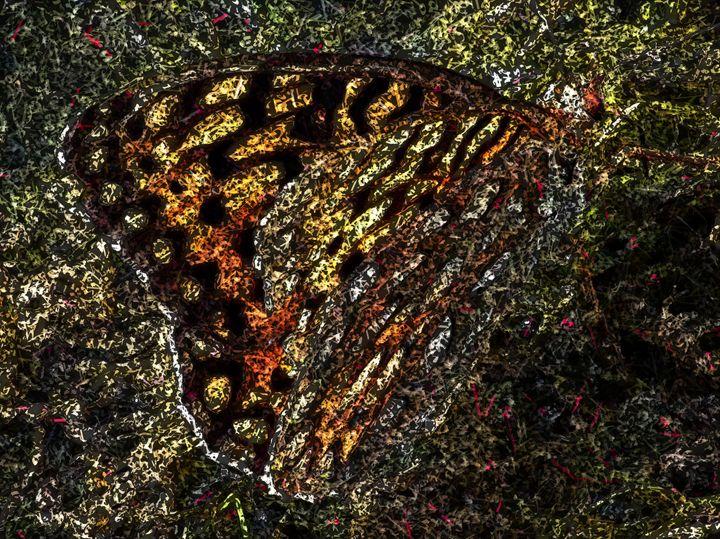 Butterfly - - Meditations