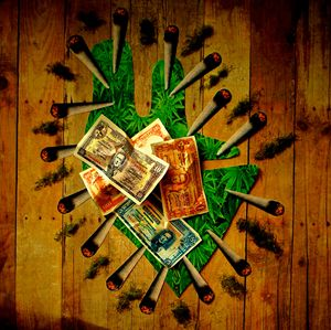 Green Money - Ellie Luna Art
