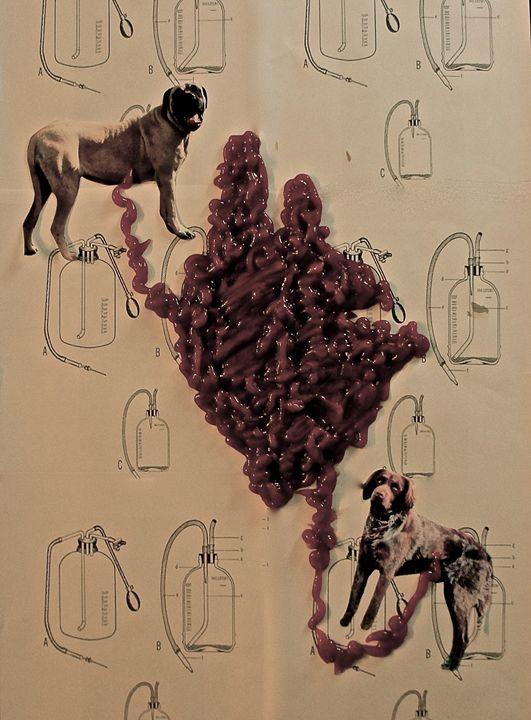 Blood Transfusion - Ellie Luna Art