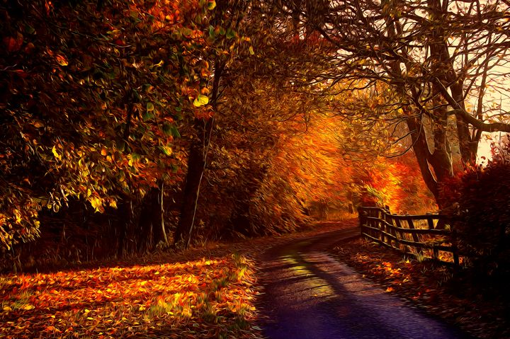 Irish Country Lane - Brymac PhotoArt