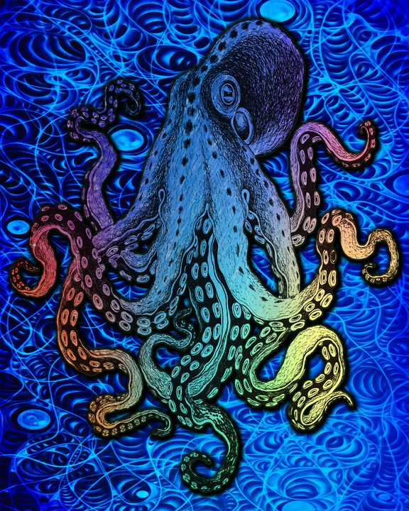 Octocolor - Artistwill