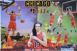 JOAKIM NOAH HOF BOUND - Dorian's One of a Kind HANDMADE NBA COLLAGES
