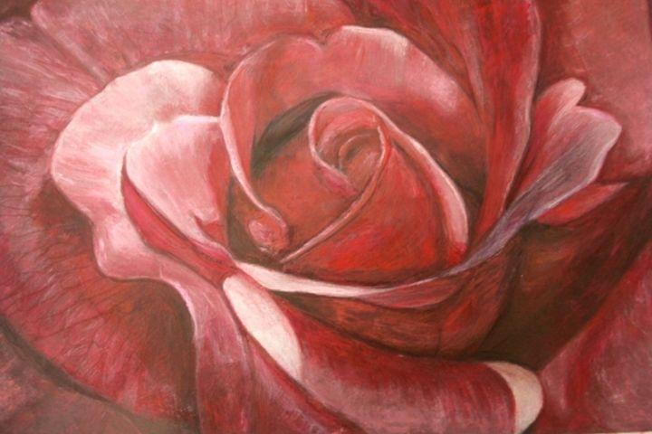 A Rose - marina's art