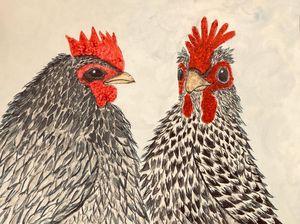 Socialite Chickens
