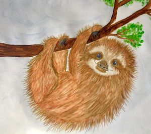 Pip the sloth