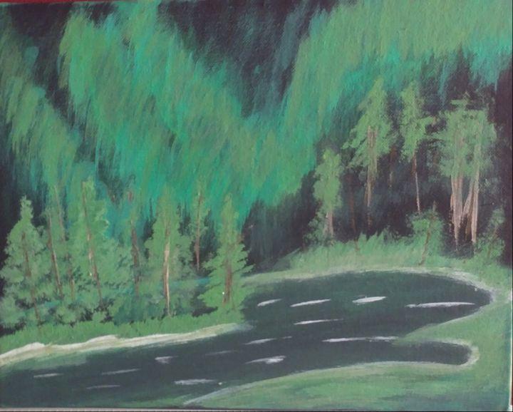 Dark Northern Lights - Nicholson Art Gallery