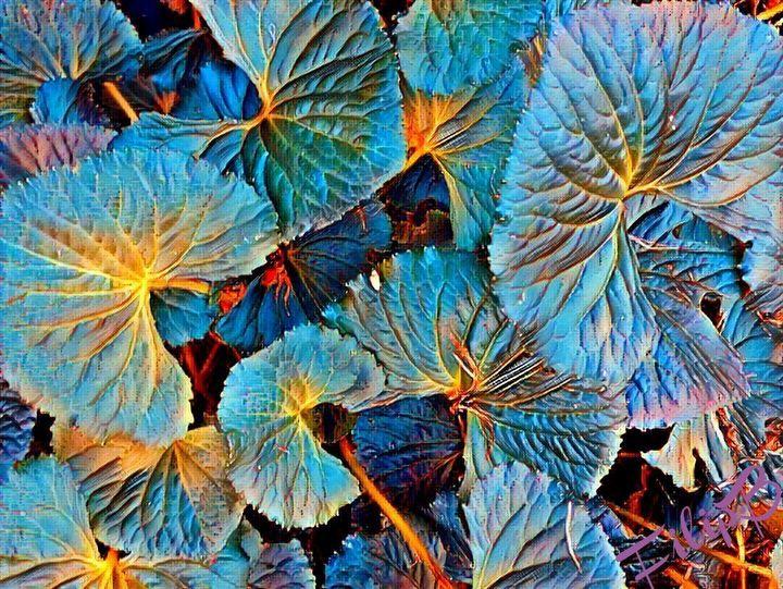 poetry in blue - FilipB