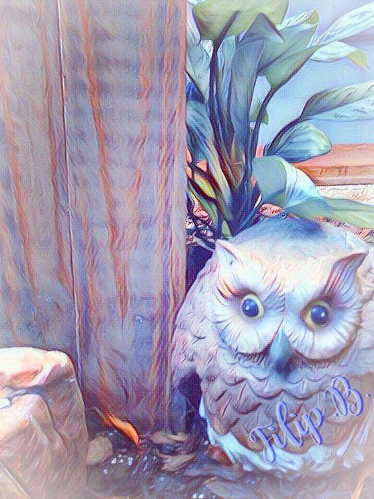 Owl - FilipB