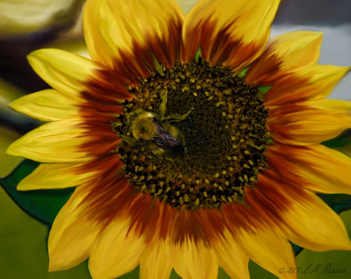 Painted Sunflower & Bee - Images Undefined