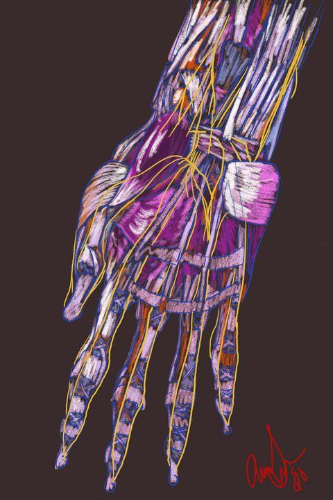 Neural Network - Amanda Lee