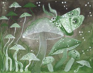 Mushroom Moth