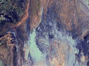 Color Splat