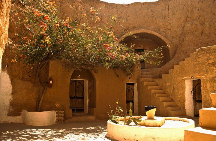 Meet me in Sahara's paradise - Dragomir Chavdarov