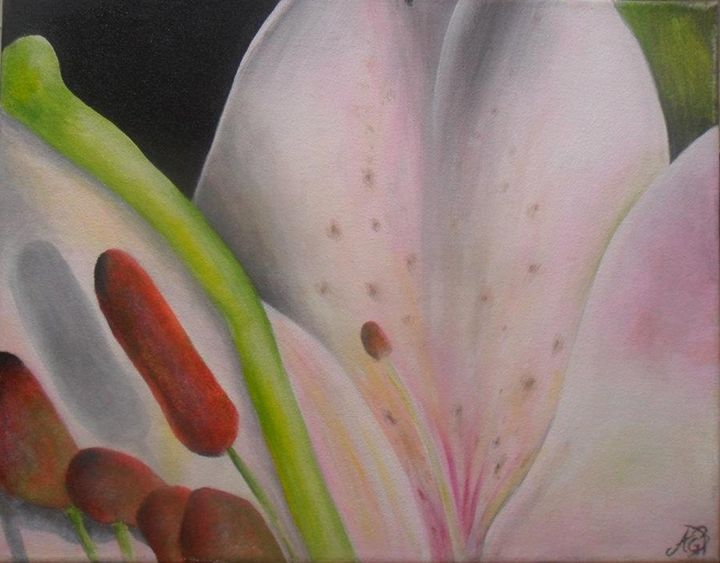 Lily Close Up - Angela Bomarito