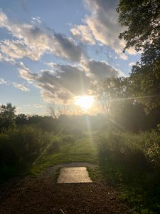 Summer Disc Golf at Valley View Park