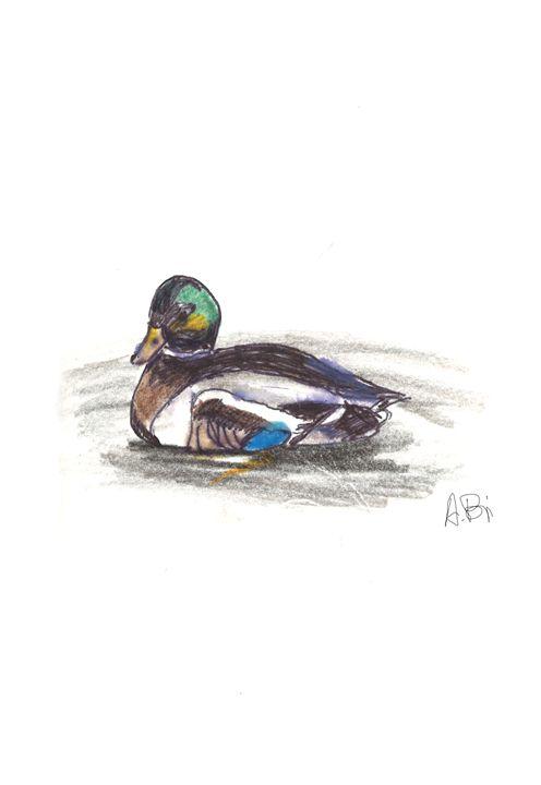 Swimming Duck - al_isin_wonderland