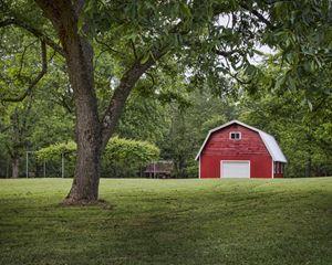 Lee's Pine Tree Acres - Ken Johnson Imagery