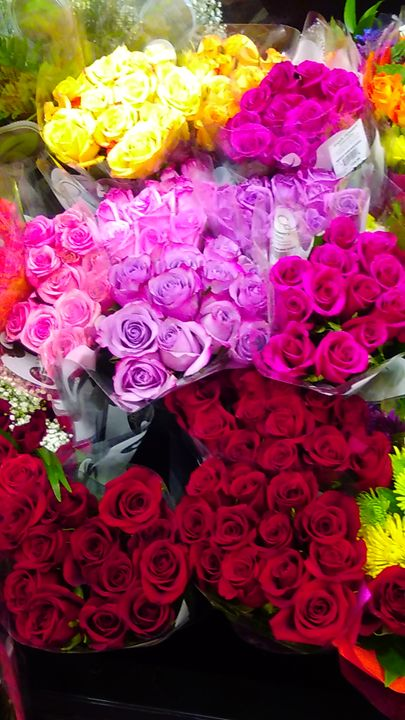 Colorful Rose's - SKS