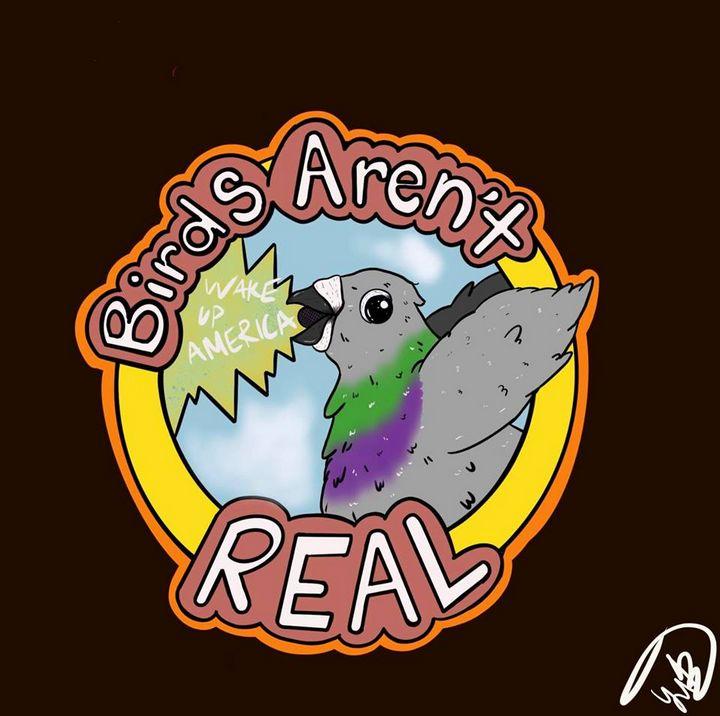 BIRDS ARENT REAL - YBsadComix