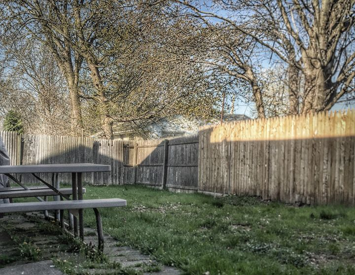 Back Yard - Piro