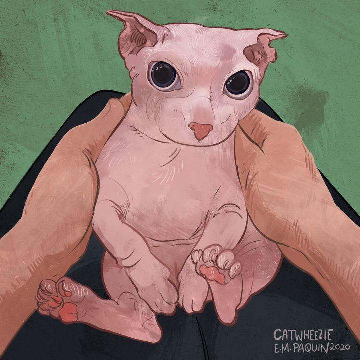 Bingus Cat - Catwheezie's Print Gallery