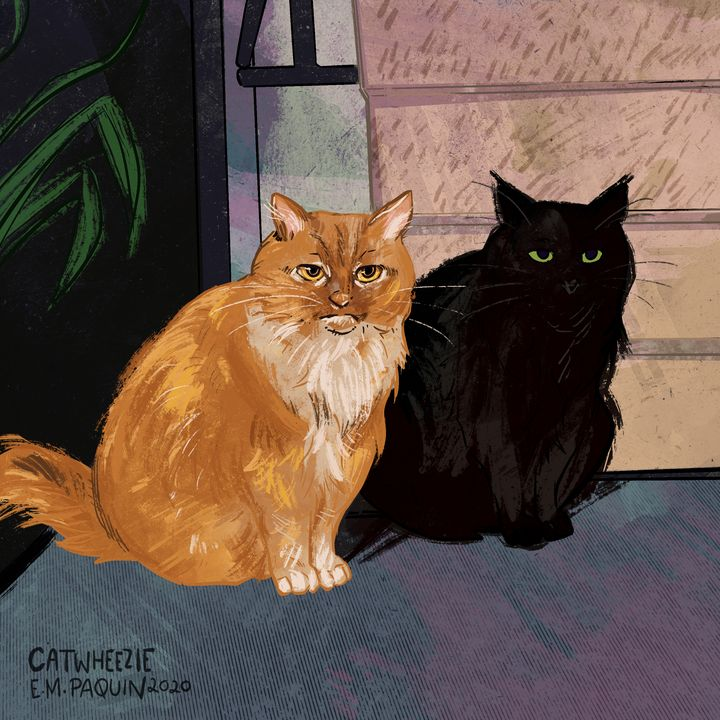 Shadow - Catwheezie's Print Gallery