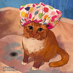 Shower Cat - Catwheezie's Print Gallery
