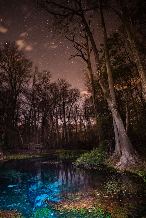 Naked After Dark - Photography by Michael Riffle