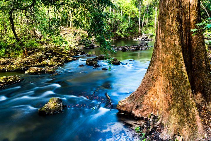 Hillsborough River - Photography by Michael Riffle
