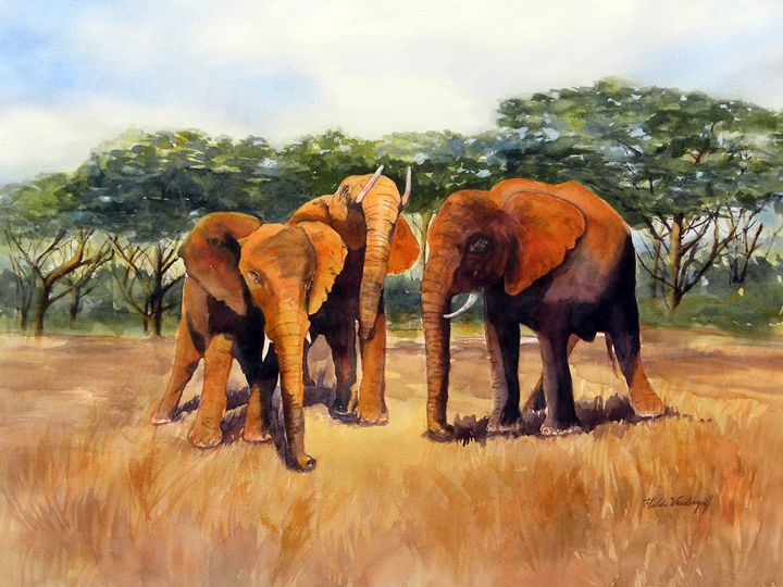 Elephants - Hilda Vandergriff
