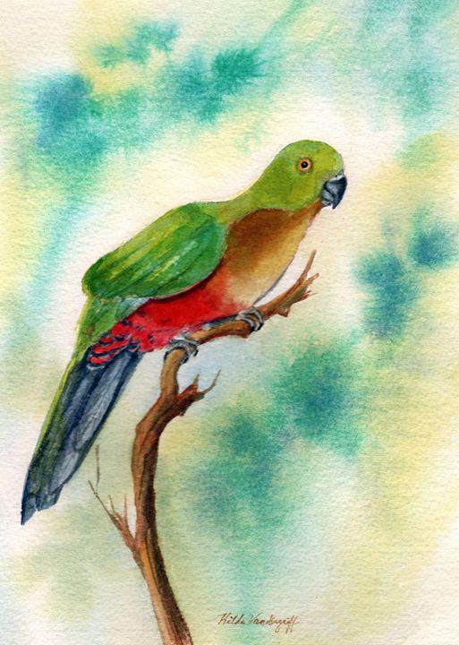 Parrot - Hilda Vandergriff