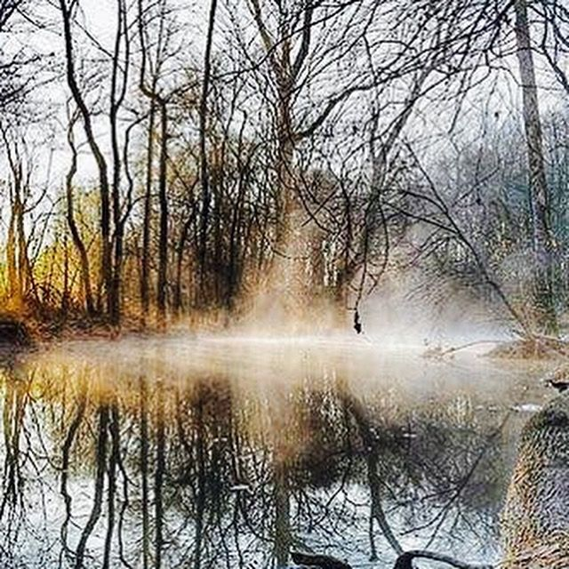 Misty morning - North Woods Photography