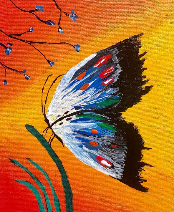 Beautiful butterfly - meenakart